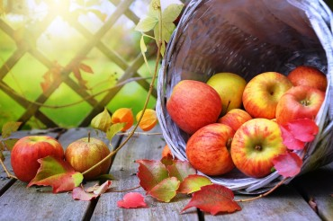 Reduce Blood Pressure with a Diet Rich in Flavanols - Top 7 Flavanols Rich Foods (Study)